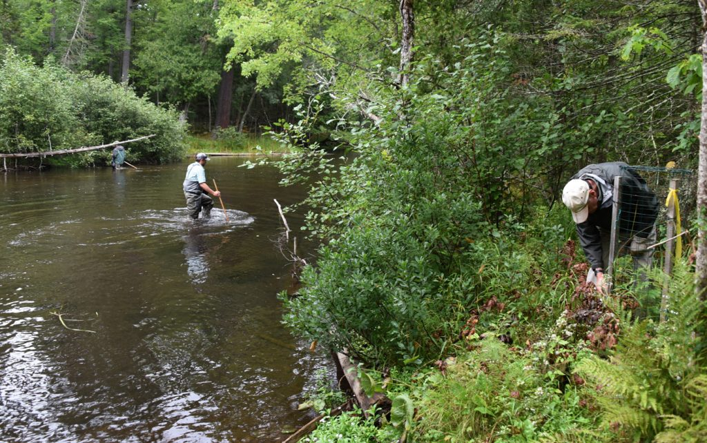 Anglers of the Au Sable annual river cleanup and picnic, Saturday, Sept. 10, 2016  ( Photo/John L. Russell)