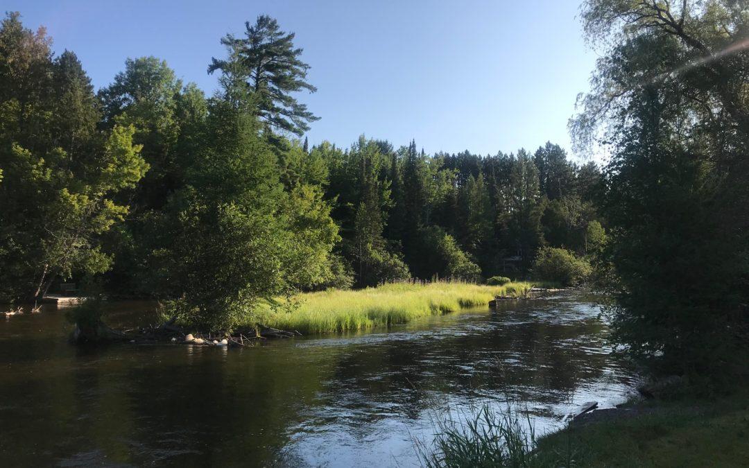 Good Summer - Gates Au Sable Lodge