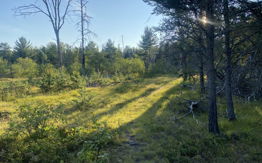 Angler Trails